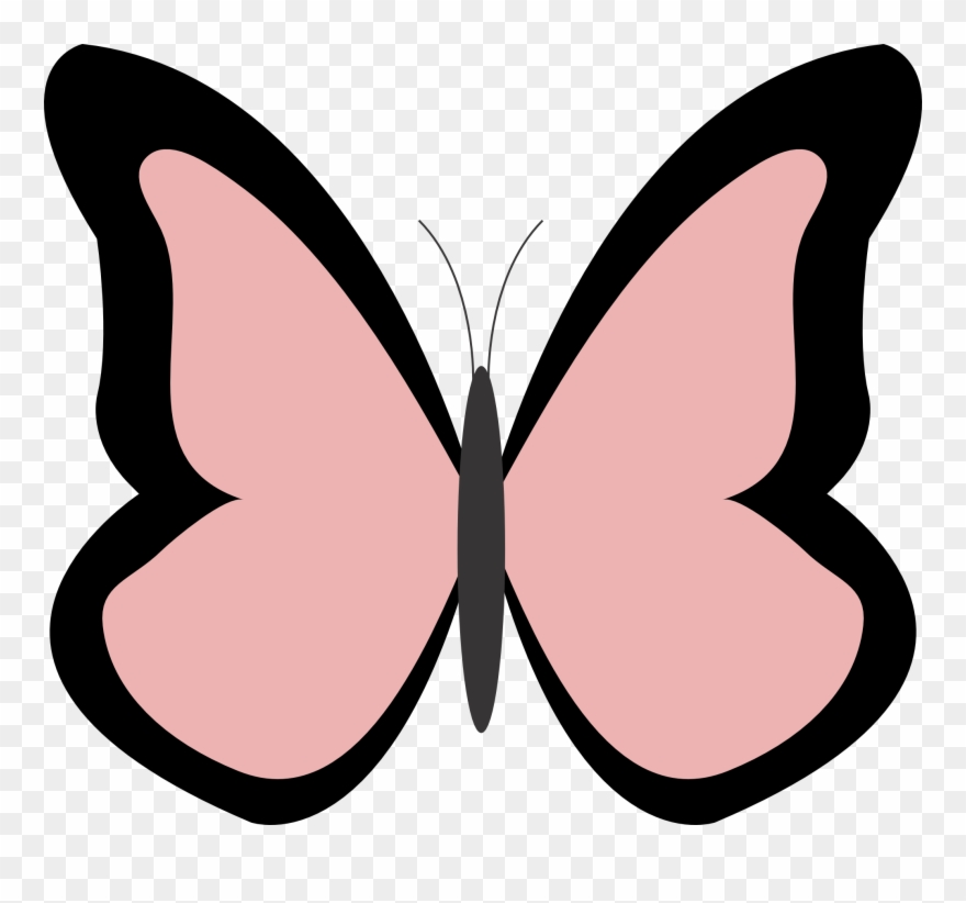Clipartist Net Butterfly Color Colour Rosy Peace.
