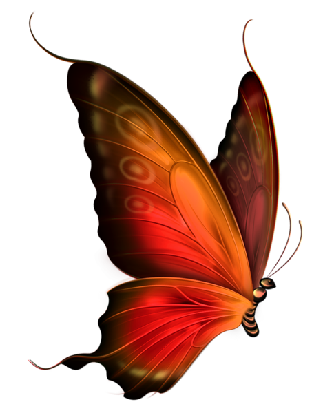 Butterfly tattoos combine well with tribal elements, especially on.