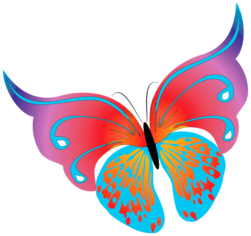 Painted Transparent Butterfly PNG Clipart.