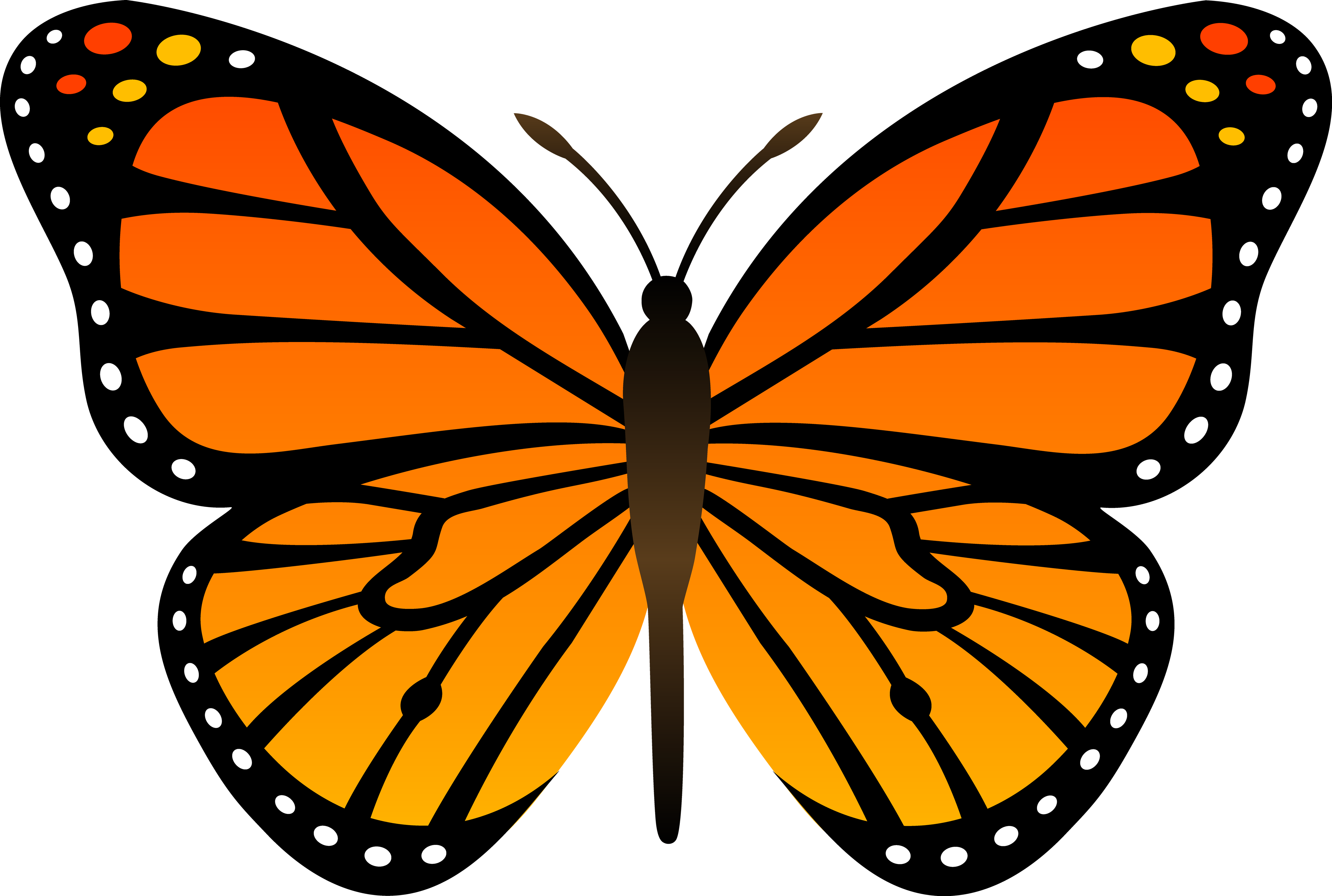 Clipart Butterfly Png.