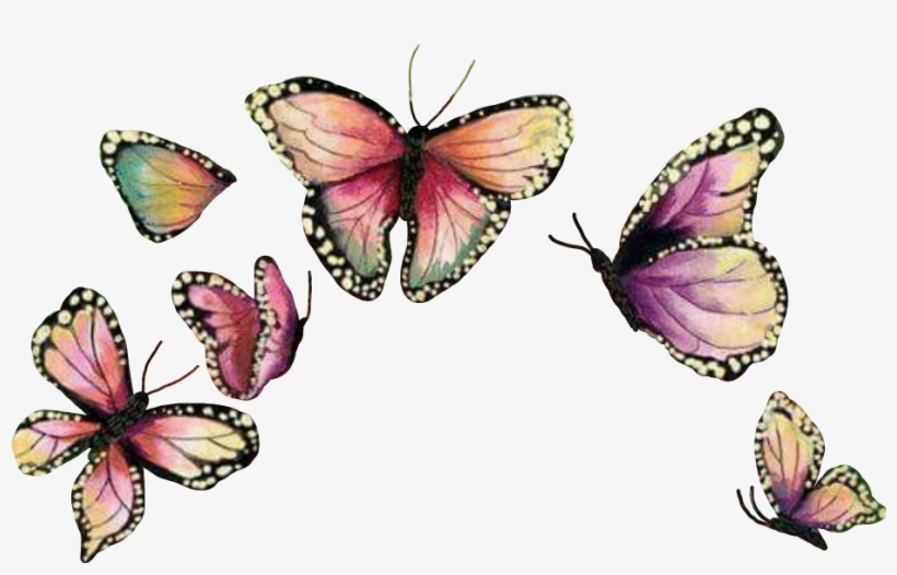 Butterfly Crown Butterflywings Mariposa Sticker.