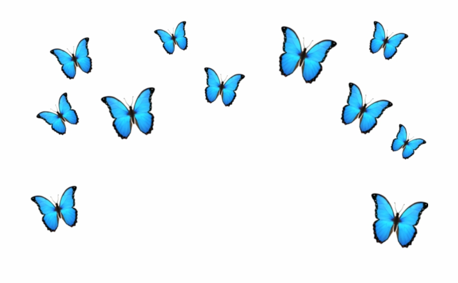 butterfly #emoji #blue #crown #tumblr #cute.