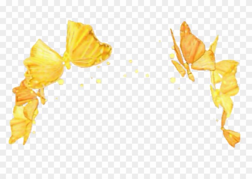 gold #snapchat #filter #butterfly.