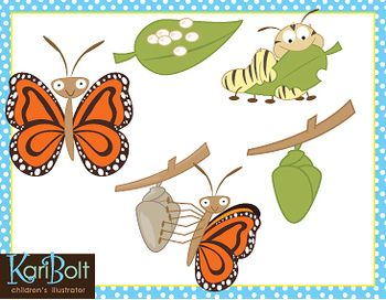 Butterfly Life Cycle Free Clip Art.