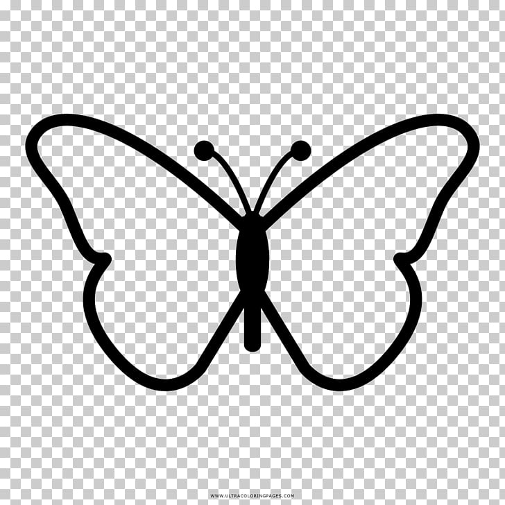 Monarch butterfly Drawing , butterfly PNG clipart.