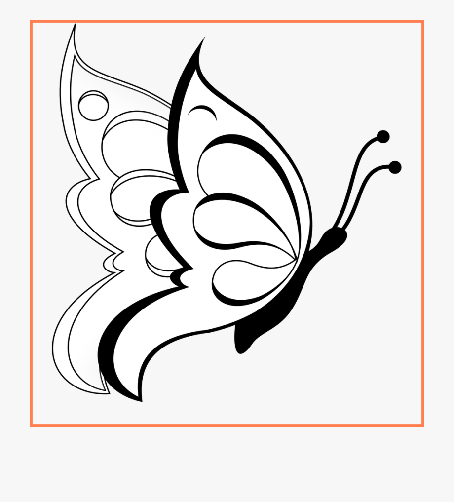 Butterfly Clipart Black And White Free.