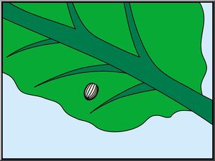 Clip Art: Butterfly: Monarch Egg Color I abcteach.com.