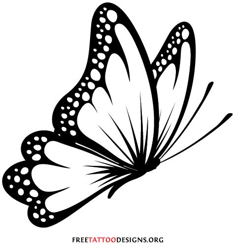 25+ best ideas about Black Butterfly Tattoo on Pinterest.