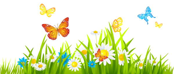 Cute butterfly and flower clipart png.