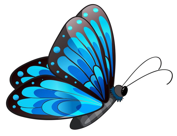 Free Clipart Of Butterflies & Free Clip Art Images #21043.