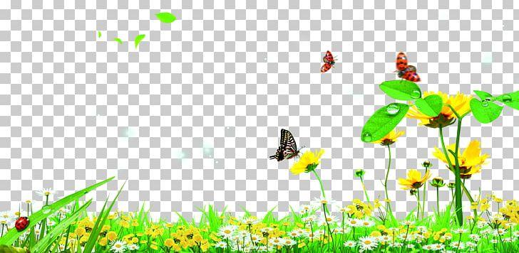 Butterfly Garden Lawn PNG, Clipart, Background Green, Butterflies.