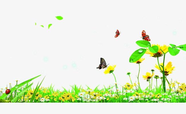Butterfly garden clipart 8 » Clipart Portal.