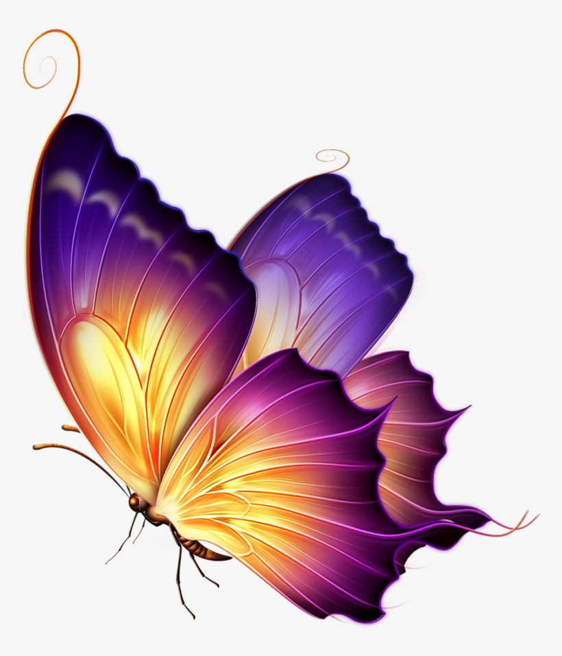 Editing Butterfly Png Download.