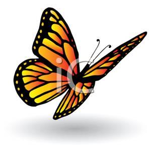 Cutout of a Monarch Butterfly In Flight.
