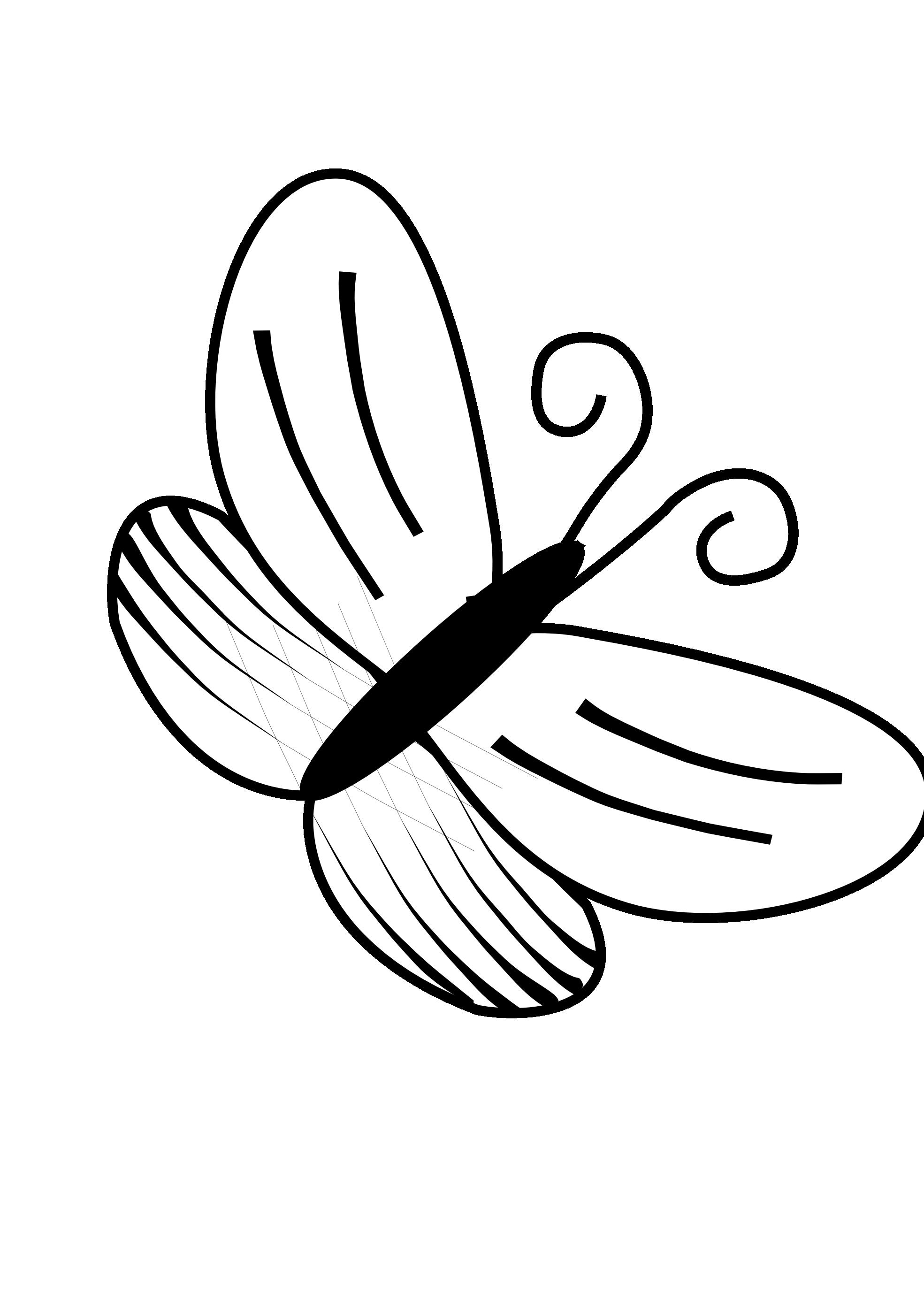 Line Drawings Of Butterflies.