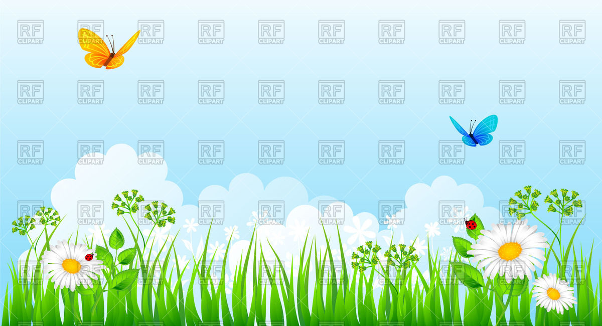 Summer meadow with grass, flowers and butterflies Vector Image.