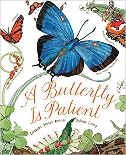 A Butterfly Is Patient: Dianna Aston, Sylvia Long: 9781452141244.