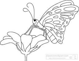 Image result for butterfly on flower clipart black and white.