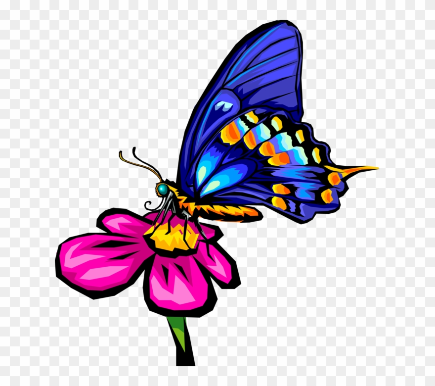 Vector Illustration Of Blue Butterfly Winged Insect.