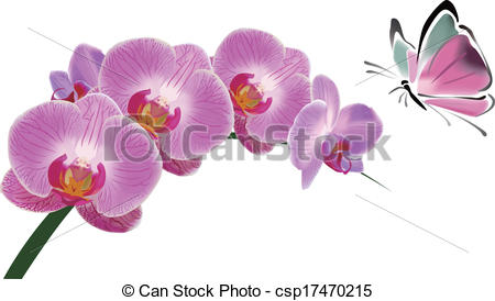 Vector Clip Art of Chinese Orchid and butterfly ink style.