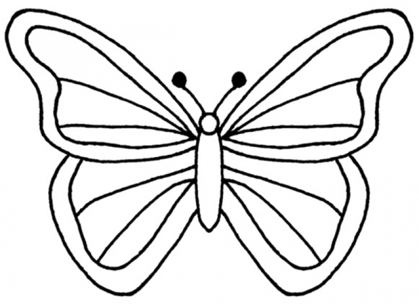 Butterfly Outline Clipart & Butterfly Outline Clip Art Images.