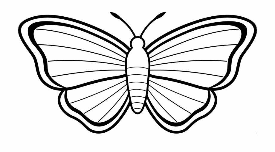 Clipart Butterfly Outline Free Images 3 Clip Art Butterflies.