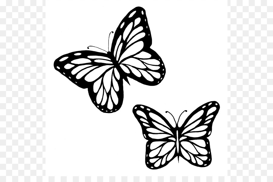 Butterfly Black And White png download.