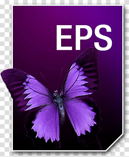 Adobe Neue Icons, EPS__, purple and black butterfly with EPS.