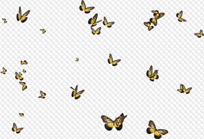 60 PNG, Overlay, placers butterflies, flying butterflies.