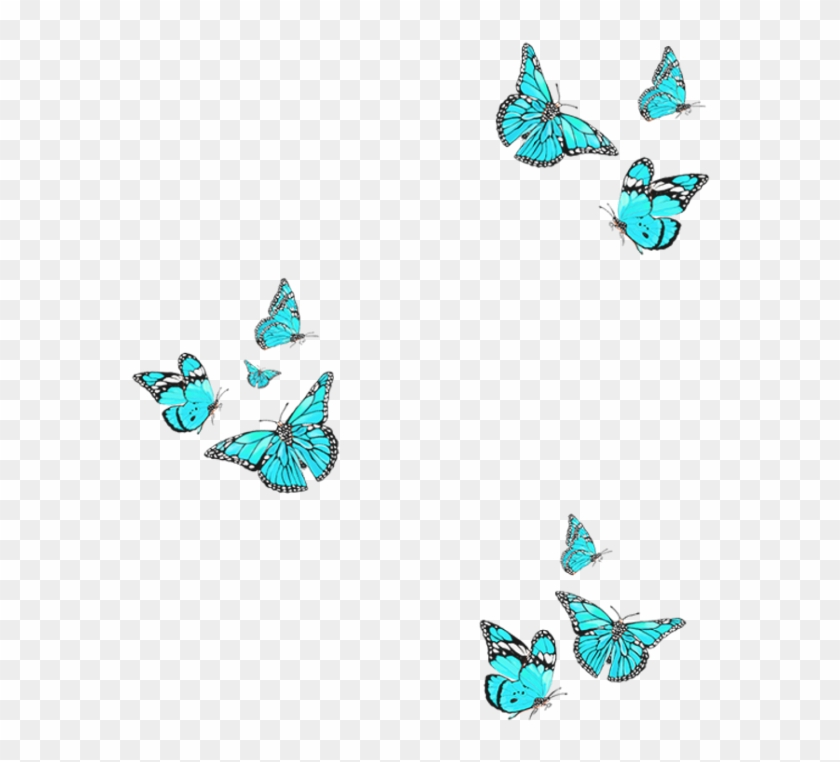 Freetoedit Remixit Butterfly Overlay Bluebutterfly.