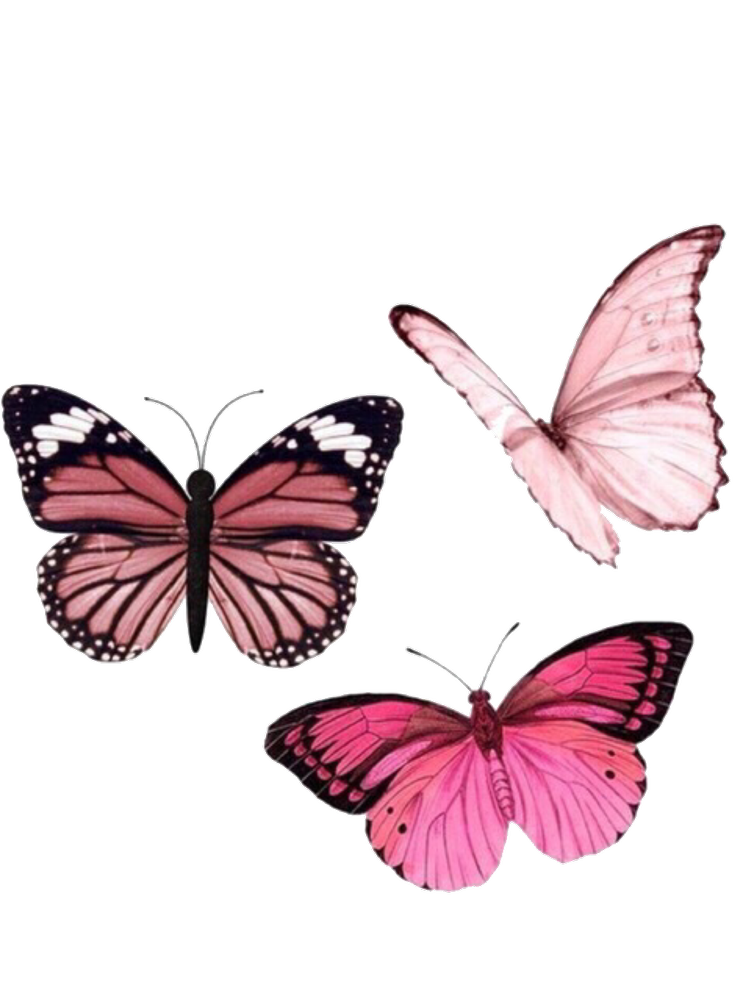 Image about pink in pngs by Faviola on We Heart It.