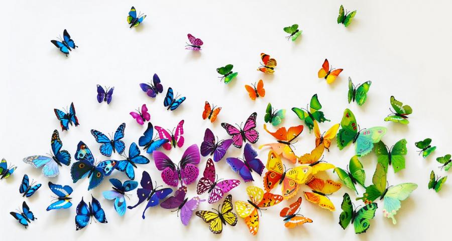 3D Butterfly Wall Art.
