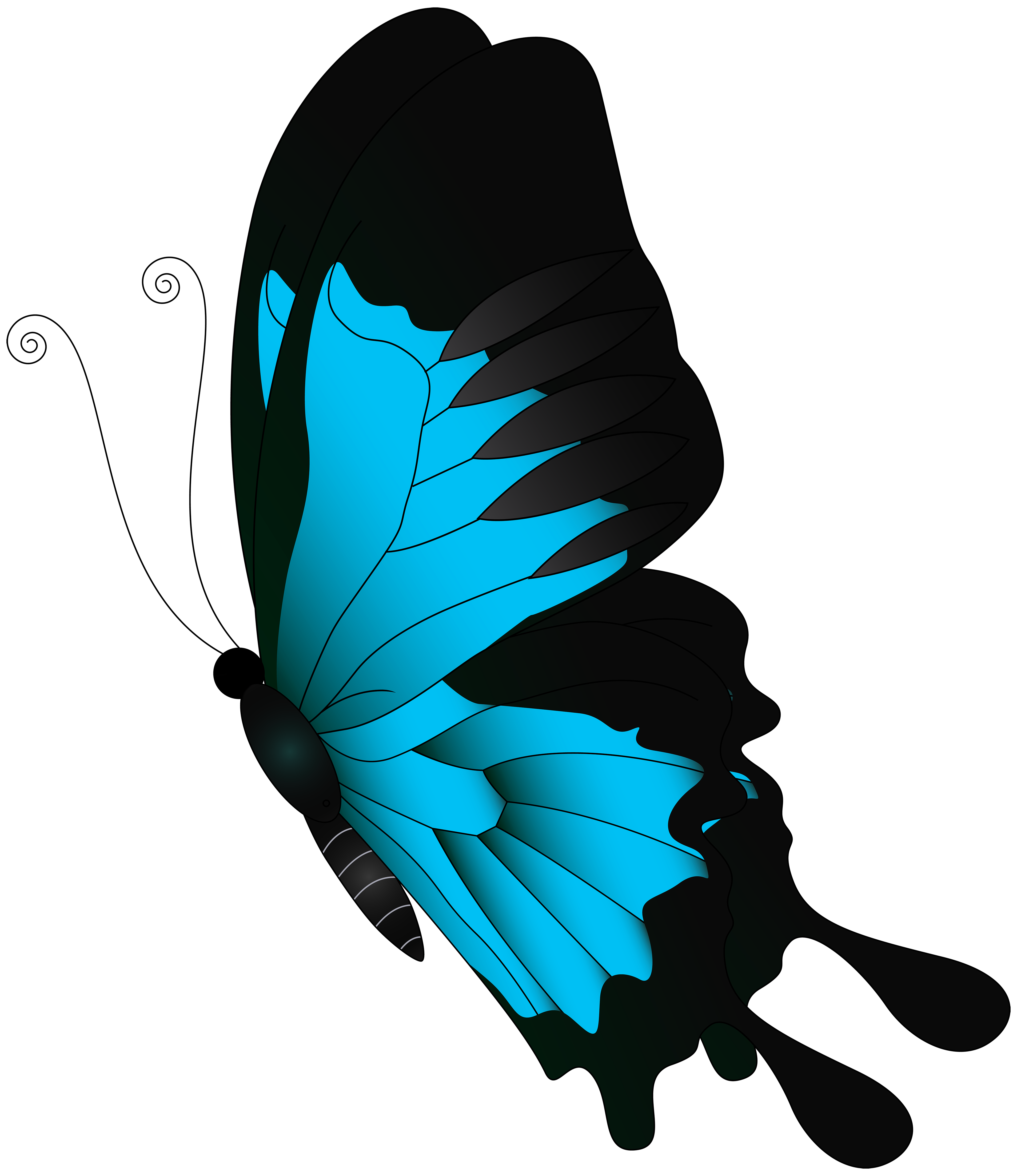 Blue Flying Butterfly PNG Clip Art.