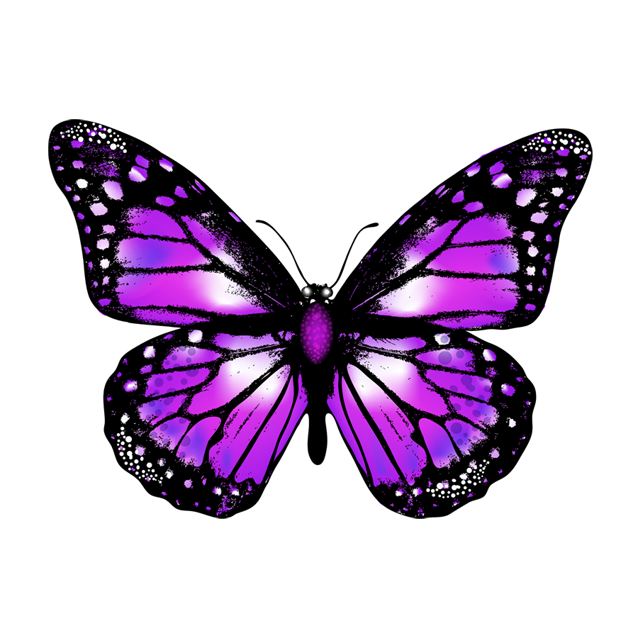 Purple Butterfly PNG Image Free Download.