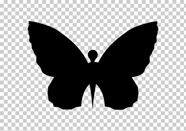 Butterfly Shape Insect, butterfly PNG clipart.