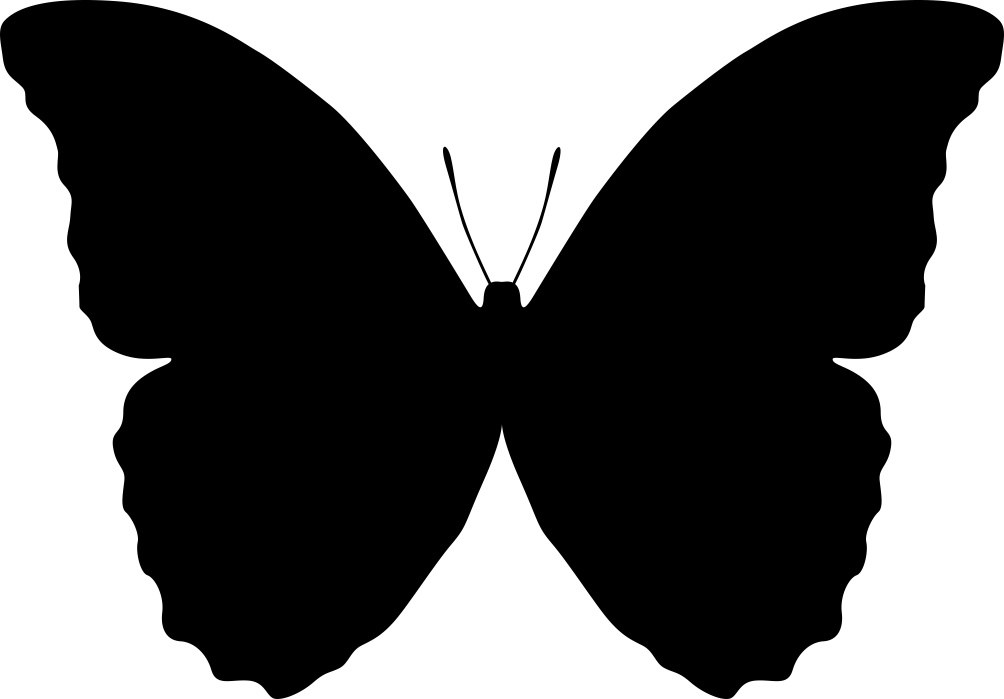 Butterfly Silhouette Vector.