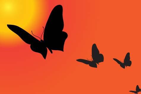 Butterfly silhouette clip art free vector download (221,536.