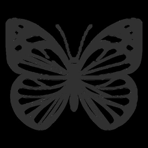 Chiricahua white butterfly silhouette.