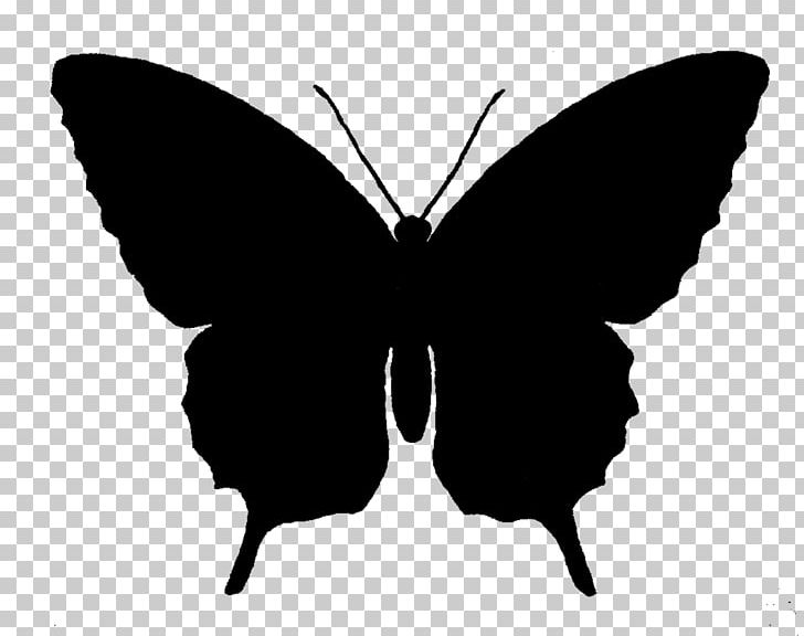 Butterfly Silhouette PNG, Clipart, Art, Arthropod, Black And White.