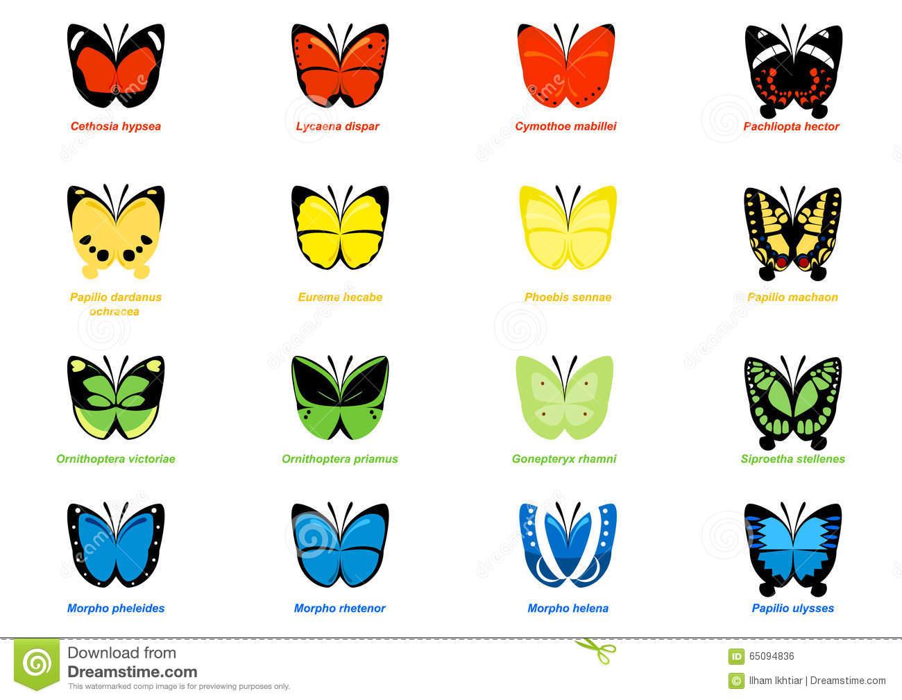 Simple Butterflies Illustration Stock Vector.