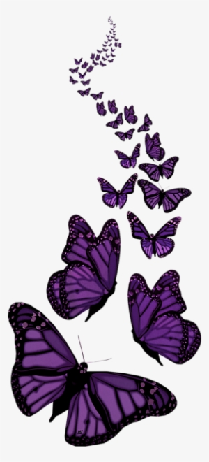 Purple Butterfly PNG, Transparent Purple Butterfly PNG Image.
