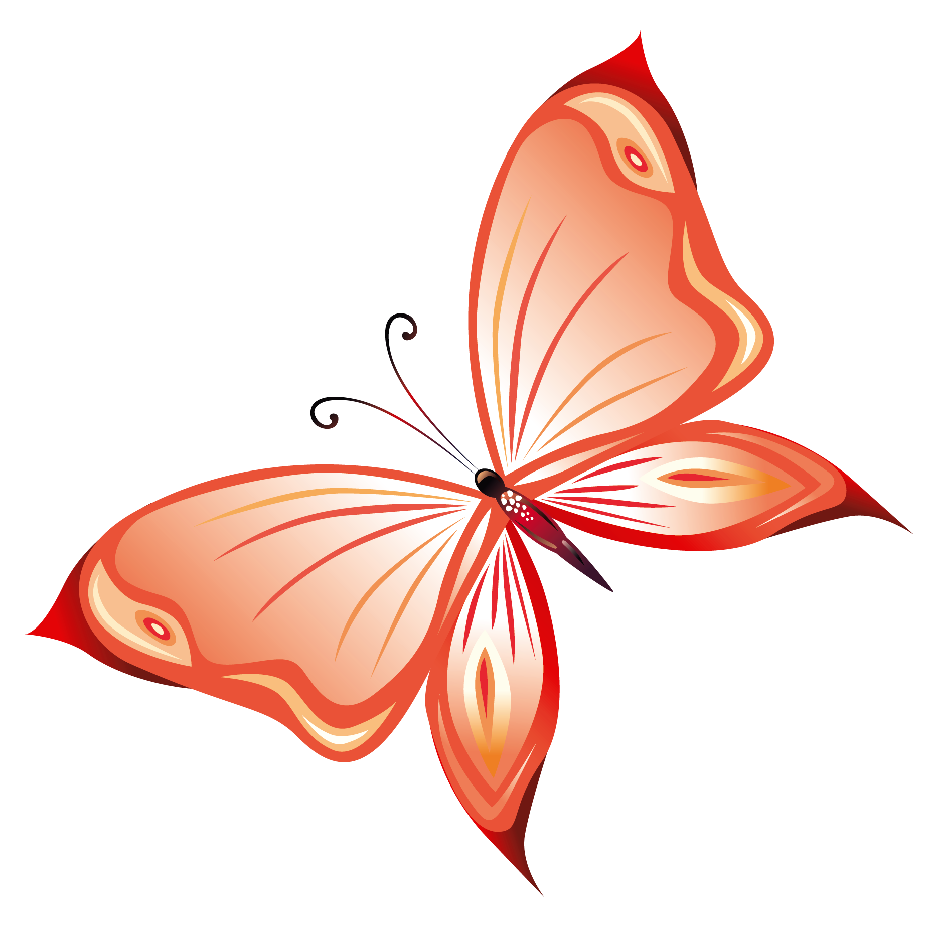 Butterfly Transparent Clipart