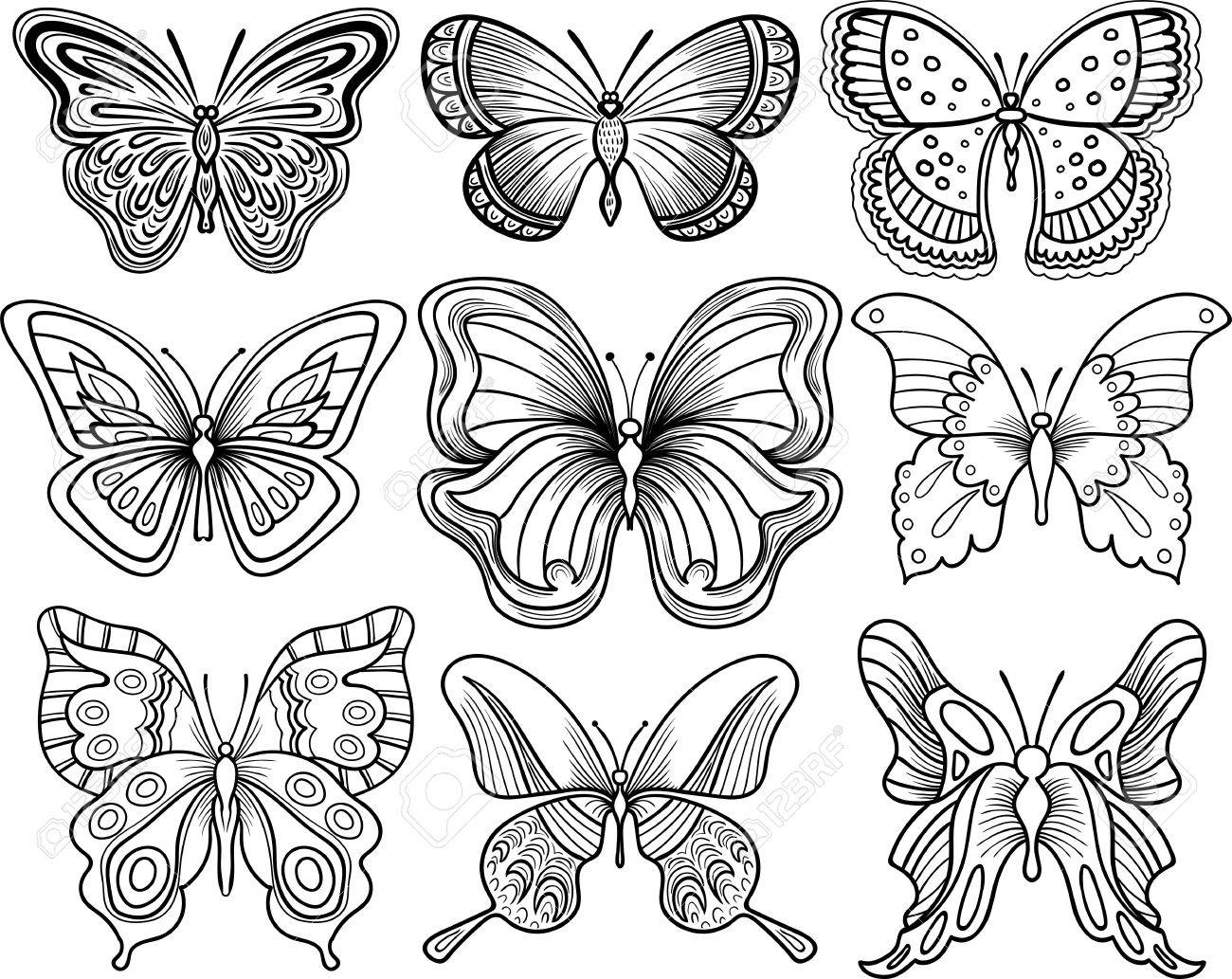 Hand drawing butterfly vector clipart black outline.