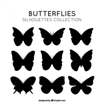 Butterfly Vectors, Photos and PSD files.