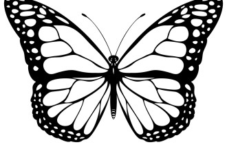 Free Butterfly Vectors, Download Free Clip Art, Free Clip Art on.