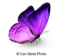 Violet butterfly Clipart and Stock Illustrations. 6,721 Violet.