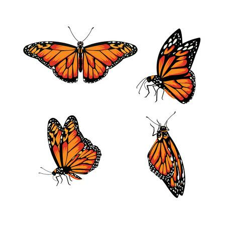 52,040 Butterfly Wings Cliparts, Stock Vector And Royalty Free.