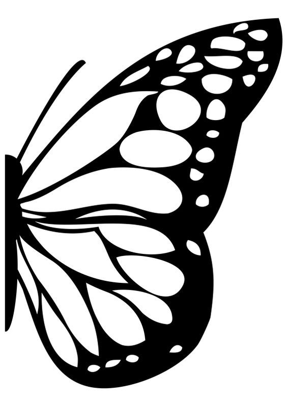 Image result for monarch butterfly wings mural.