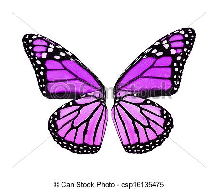 Butterfly wings Stock Illustrations. 47,884 Butterfly wings clip.