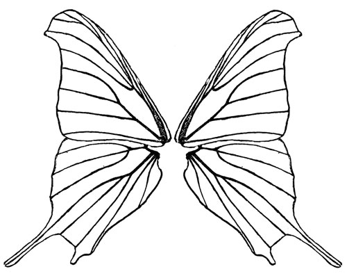 Free Black And White Butterfly Wings, Download Free Clip Art.